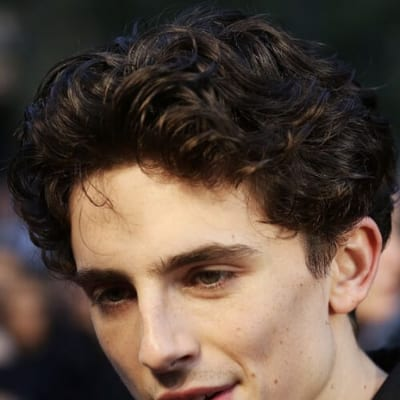 timothee chalamet curly hairstyles for men