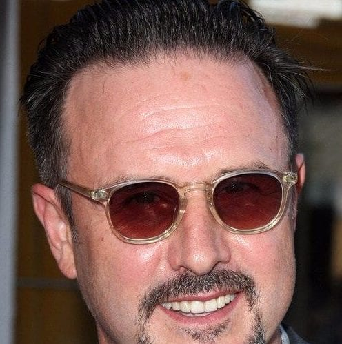 david arquette mens hairstyles for thin hair