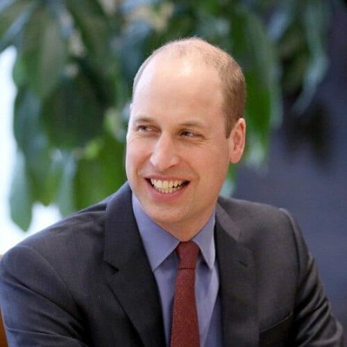 prince william mens hairstyles for thin hair