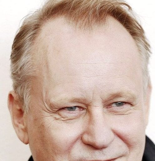 stellan skarsgard mens hairstyles for thin hair