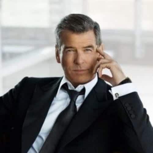 pierce brosnan business hairstyles