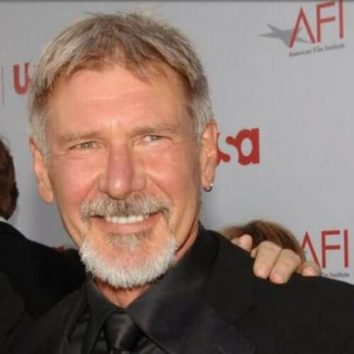 harrison ford hairstyles with beard