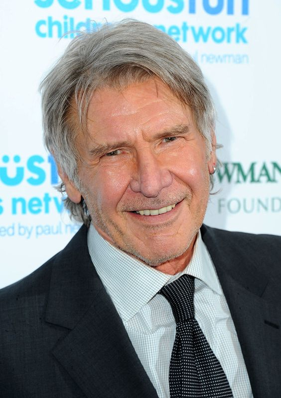 The Harrison Ford hair style for men