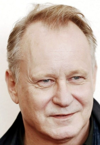 stellan skarsgard hairstyles for men with receding hairlines