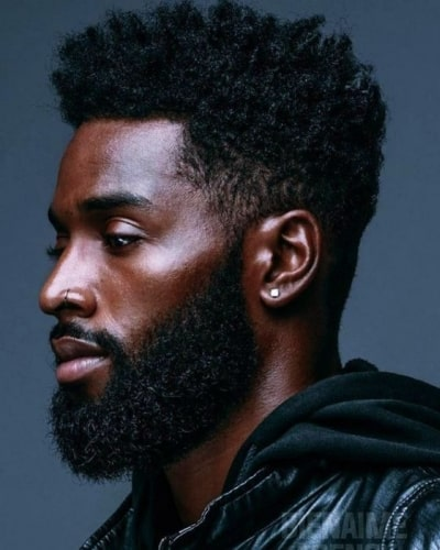 Black Men Hairstyles with Beards